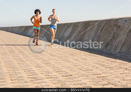 Two young women jogging together stock photo, Two young women jogging together at promenade by Wavebreak Media