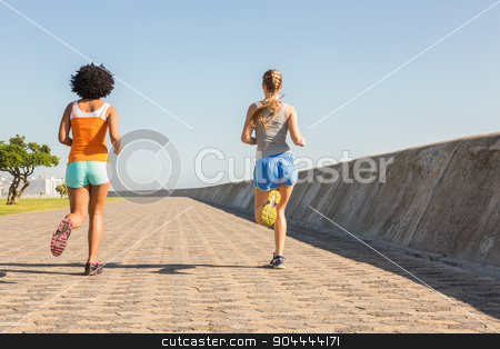 Rear view of two young women jogging together stock photo, Rear view of two young women jogging together at promenade by Wavebreak Media