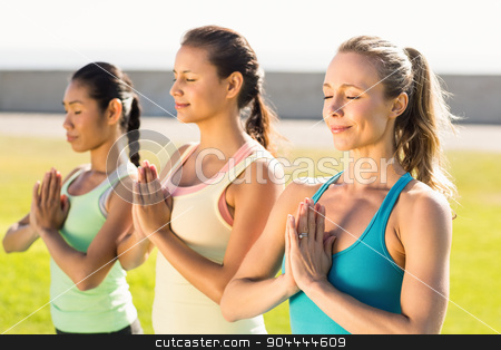 Peaceful sporty women doing yoga together stock photo, Peaceful sporty women doing yoga together in parkland by Wavebreak Media