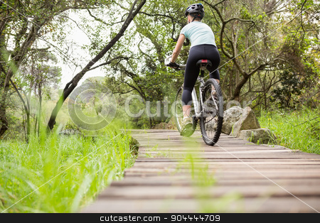 Rear view of a fit woman cycling her bike stock photo, Rear view of a fit woman cycling her bike on a wooden path by Wavebreak Media