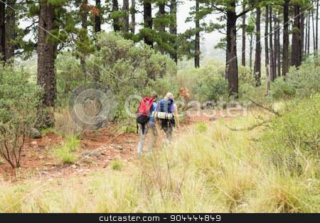 Young hiker couple hiking  stock photo, Young hiker couple hiking in the nature by Wavebreak Media
