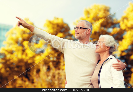 senior couple hugging in park stock photo, family, age, tourism, travel and people concept - senior couple hugging and pointing finger in park by Syda Productions