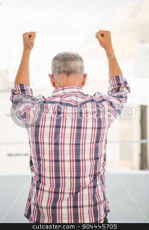 Rear view of casual businessman cheering stock photo, Rear view of casual businessman cheering in the office by Wavebreak Media
