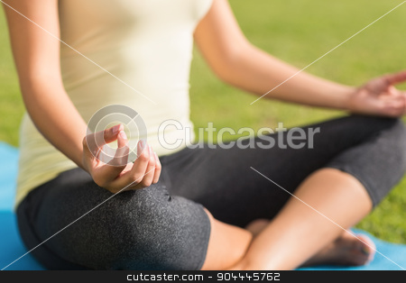 Fit woman meditating on exercise mat stock photo, Fit woman meditating on exercise mat in parkland by Wavebreak Media