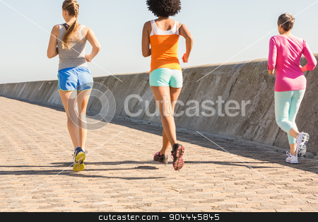 Rear view of sporty women jogging together stock photo, Rear view of sporty women jogging together at promenade by Wavebreak Media