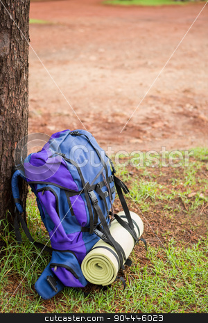 An hiking backpack leaning on a tree stock photo, Side view of an hiking backpack and hiking pole leaning on a tree by Wavebreak Media