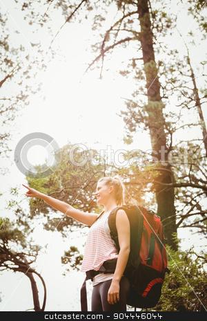 Smiling blonde hiker pointing far away stock photo, Smiling blonde hiker pointing far away in the nature by Wavebreak Media