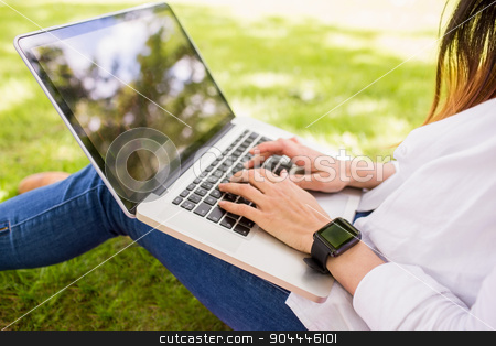 Beautiful brunette using laptop in the park stock photo, Beautiful brunette using laptop in the park on a sunny day by Wavebreak Media