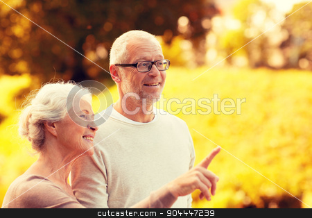senior couple in park stock photo, family, age, tourism, travel and people concept - senior couple pointing finger in park by Syda Productions