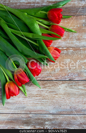 close up of red tulips on wooden background stock photo, gardening , flowers, advertisement and holidays concept - close up of red tulips on wooden background by Syda Productions