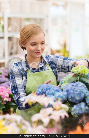 happy woman taking care of flowers in greenhouse stock photo, people, gardening and profession concept - happy woman or gardener taking care of flowers in greenhouse by Syda Productions