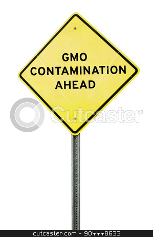 GMO Contamination stock photo, Roadsign warning that there is GMO contamination ahead by Robert Byron