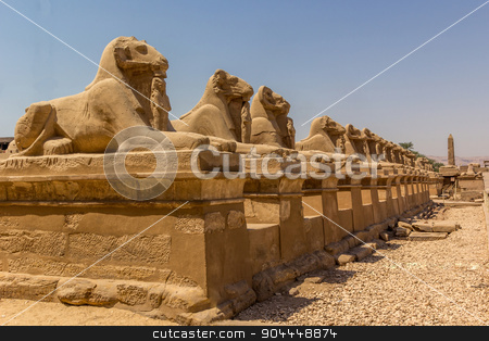 luxor avenue stock photo, a horizontal view of the Avenue of the ram-headed Sphinxes. Karnak Temple. Luxor, Egypt  by Noelia