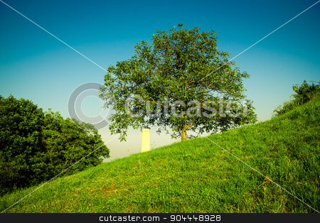 A monument next to a tree stock photo, A monument next to a tree with a dark blue sky behind by Roland Valentin Raicu