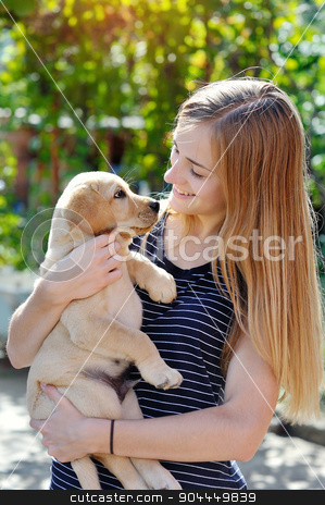 beautiful young woman holds a puppy Labrador stock photo, beautiful young woman holds a puppy Labrador. by timonko
