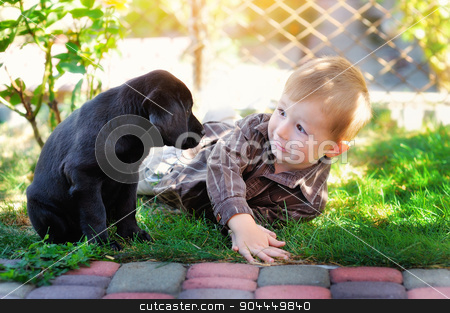 little boy playing in the yard with a puppy Labrador stock photo, little boy playing in the yard with a puppy Labrador. by timonko