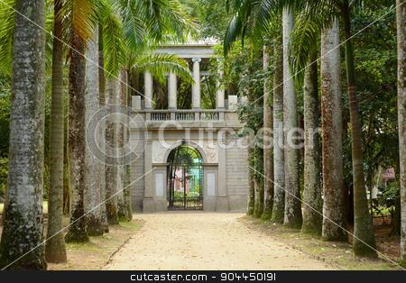Avenue of Royal Palm Trees. Botanical Garden. stock photo, Botanical Garden in Rio de Janeiro, Brazil. by nicolas menijes