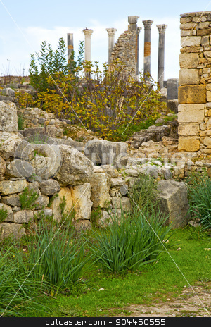 volubilis in  africa the  deteriorated monument and site stock photo, volubilis in morocco africa the old roman deteriorated monument and site by mason luca