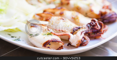 Italian Calamari stock photo, Fresh calamari served in an old Italian restaurant (Tuscany). Daylight. by Paolo Gallo