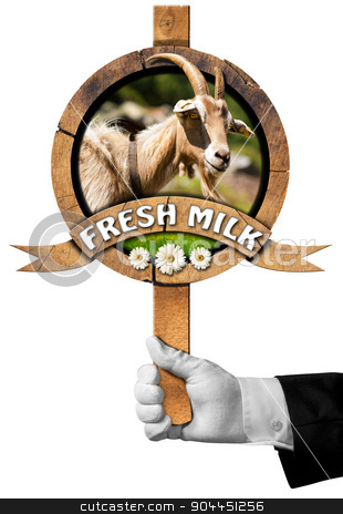 Goat Fresh Milk -  Sign with Hand of Chef stock photo, Hand of chef holding a wooden sign with head of goat with horns, green grass and daisy flowers, wooden ribbon with text Fresh milk. Isolated on white background by catalby