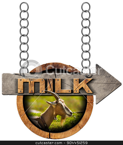 Goat Milk - Wooden Sign with Arrow and Chain stock photo, Wooden sign with directional arrow with text Milk, head of goat with horns. Hanging from a metal chain and isolated on white by catalby