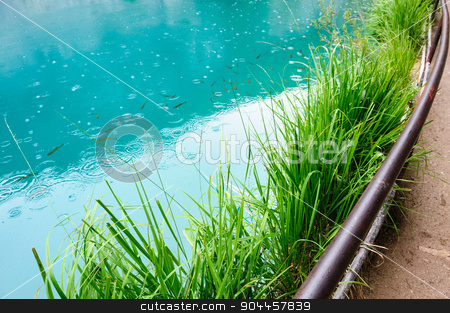 Clear water of Plitvice Lakes, Croatia stock photo, Extremely clear blue water of Plitvice Lakes, Croatia. Rainy day. by Serghei Starus