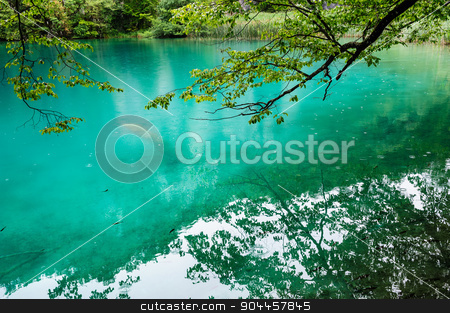 Clear water of Plitvice Lakes, Croatia stock photo, Extremely clear water of Plitvice Lakes, Croatia. Rainy day. by Serghei Starus