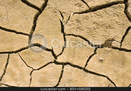 Cracks in dry earth stock photo, Animal footprints in dried earth  by Digifoodstock