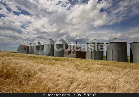 Row of Granaries stock photo, Row of Granaries in Manitoba Canada Prairie by Mark Duffy
