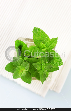Fresh herbs in a vase  stock photo, Fresh herbs in a vase - overhead view by Digifoodstock