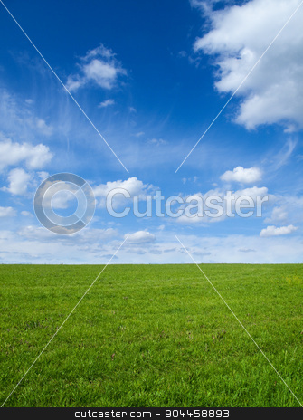 Green field and sky  stock photo, Landscape - Green field and blue sky  by Digifoodstock
