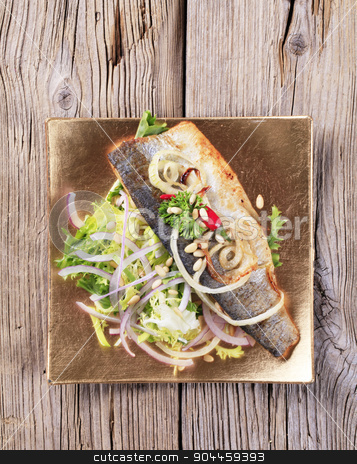 Pan fried trout and green salad stock photo, Pan fried trout fillet and green salad by Digifoodstock