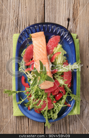 Salmon fillet and fresh salad stock photo, Salmon fillet on a nest of fresh salad by Digifoodstock