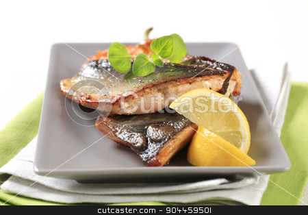 Pan fried fish fillets stock photo, Pan fried fish fillets and vegetable garnish by Digifoodstock