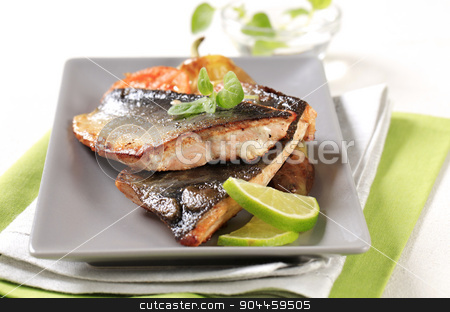 Pan fried trout fillets  stock photo, Pan fried trout fillets and vegetable garnish by Digifoodstock