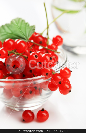 Red currant stock photo, Glass bowl of freshly picked red currants  by Digifoodstock