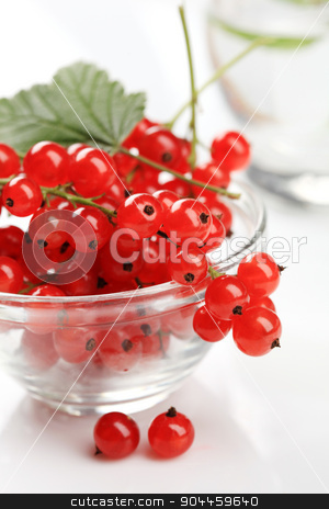 Red currant  stock photo, Bowl of red currant berries - detail by Digifoodstock