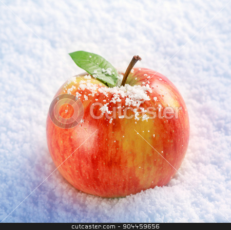 Apple in snow  stock photo, Fresh red apple in snow - closeup by Digifoodstock