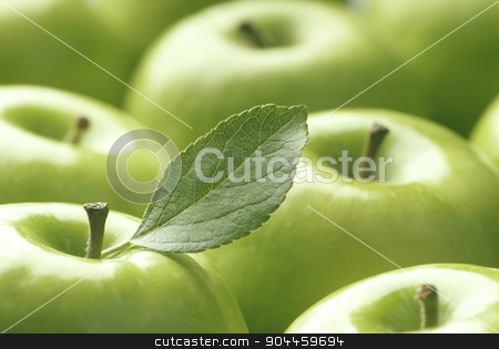 Green Apples stock photo, Close up of shiny Granny Smith apples  by Digifoodstock