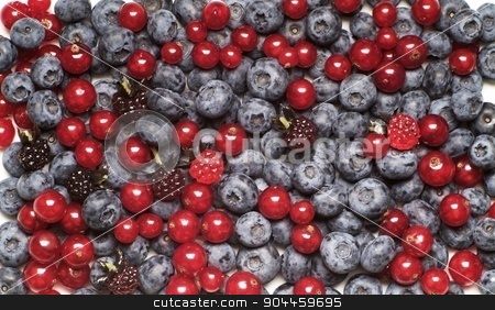 Berry fruit stock photo, Mix of berry fruits - full frame by Digifoodstock