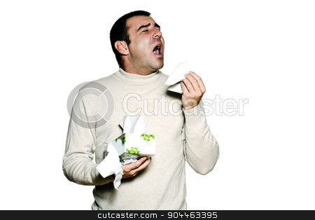 portrait man sneezing cold and flu allergy stock photo, Portrait of a  man sneezing cold and flu allergy in studio isolated on white isolated background by Ishadow