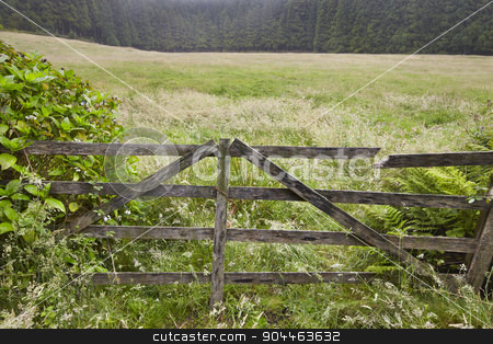Rusty wooden door in the countryside with forest. Foggy day stock photo, Rusty wooden door in the countryside with forest. Foggy day. Portugal by ABBPhoto