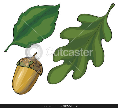leaves and acorn vector stock vector clipart, Leaves and Acorn Vector. Includes leaves and acorn graphics on a white background. by Aleksandra Serova