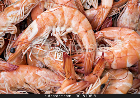 background from shrimps stock photo, Fresh boiled tiger shrimps as a food background by Maren Winter