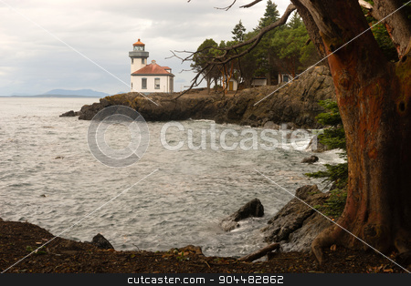 Madrona Tree Lime Kiln Lighthouse San Juan Island Haro Strait stock photo, A storm is brewing as this strong Madrona Tree frames Lime Kiln Lighthouse on San Juan Island, Washington by Christopher Boswell