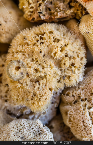 Natural Sea Sponges for Sale in a Gift Shop in Bodrum stock photo, Natural sea sponges for sale in a gift shop in Bodrum by OZMedia