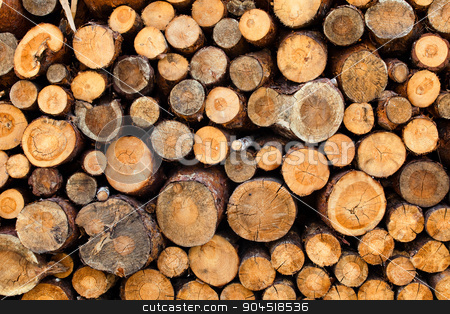 Woodstacks stock photo, Woodstack background. A lot of pieces firewoods. by bezikus