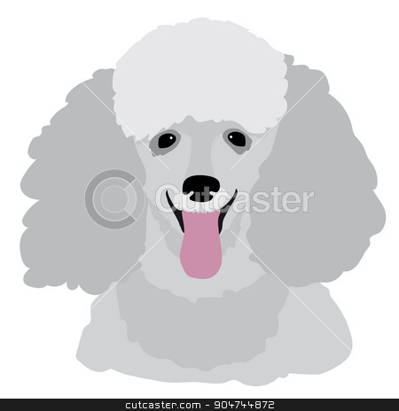 Toy Poodle stock vector clipart, A stylized portrait of a grey toy poodle by Maria Bell