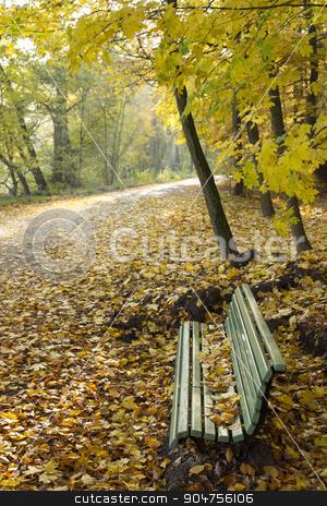 Park bench with autumn leaves stock photo, Park bench on the trail with autumn leaves and sunshine by Bernd Kröger