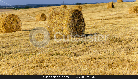 Stack of straw   stock photo,   an agricultural field where harvested cereals and straw collected in a stack. summer by ihar leichonak